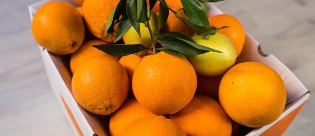 Ventajas de comprar naranjas online