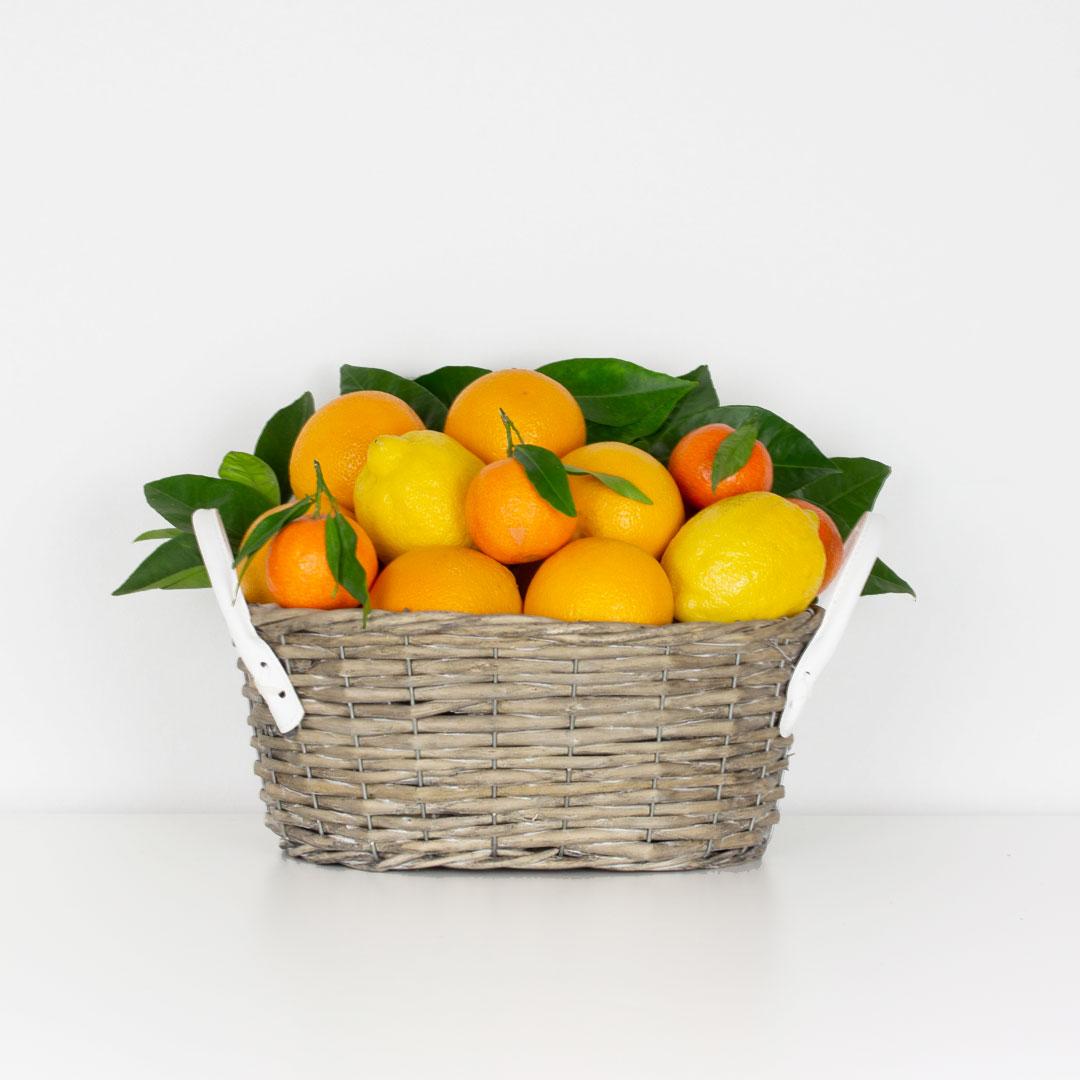 Cesta-Vitaminas-5Kg