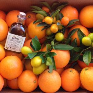 Promoción Aceite y Naranjas