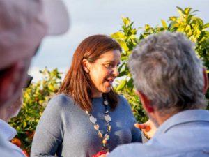 Visitar un huerto de naranjos