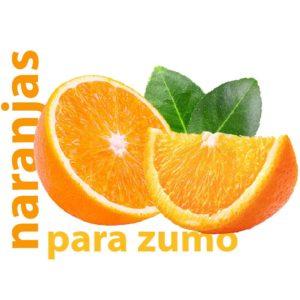 comprar naranjas de zumo de valencia a domicilio