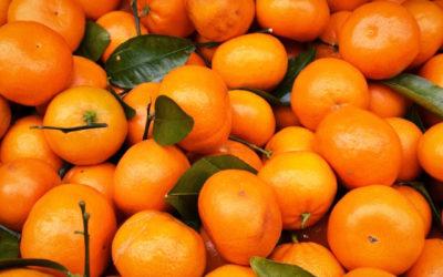 ¿En qué se diferencian las naranjas y mandarinas?