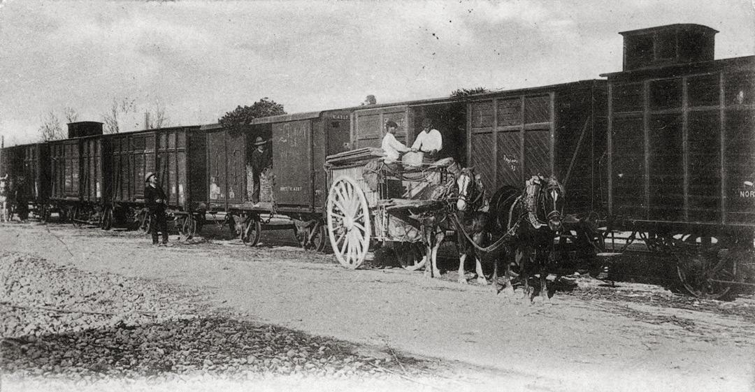 tren ribera huerto